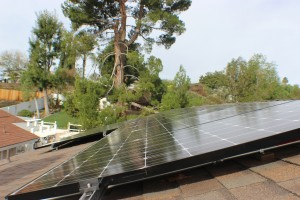 Side view of solar panels on roof overlooking a backyard.